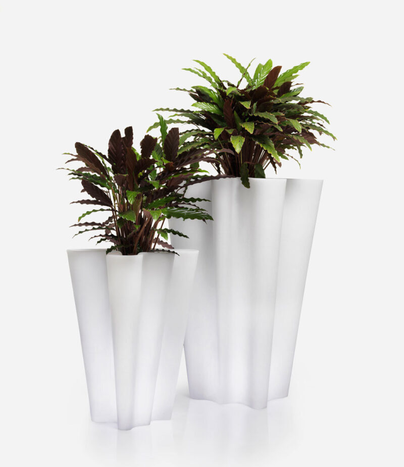 Two of the Vondom Bye Bye planters in white with green plants.