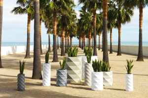 A collection of Marquis planters by Vondom under palm trees.
